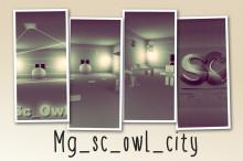 mg_sc_owl_city